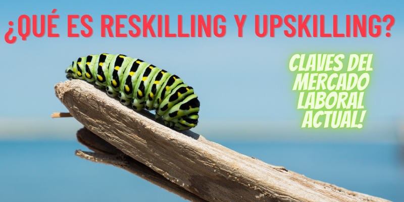 ¿QUÉ ES RESKILLING Y UPSKILLING? CLAVES DEL MERCADO LABORAL ACTUAL