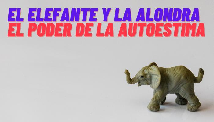 El Elefante y la Alondra (Cómo ganar confianza en nosotros mismos)